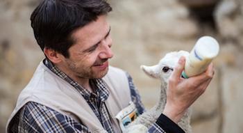Votre testament pour les animaux