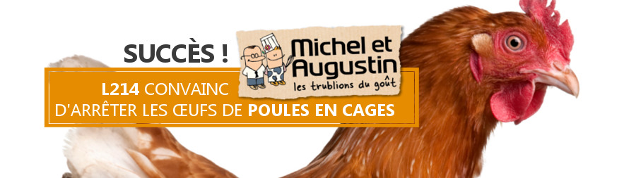 L214 convainc Michel et Augustin de stopper les œufs de batterie