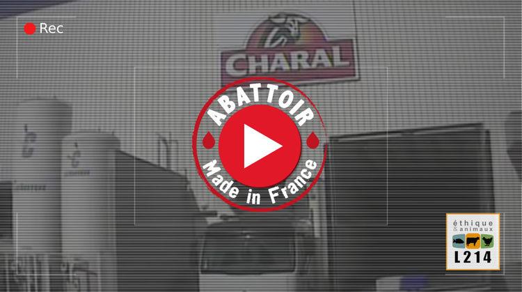 abattoir Charal