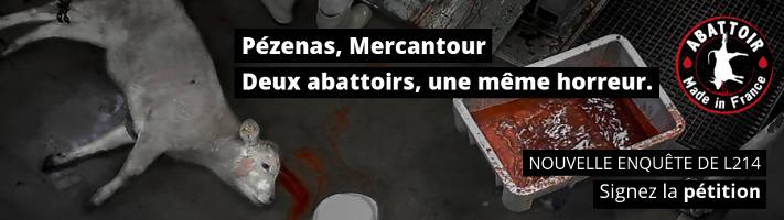 Abattoirs de Pézenas et du Mercantour