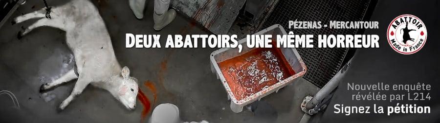 Abattoirs de Pézenas et Mercantour