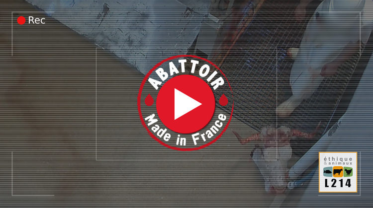 Abattoir de Mercantour