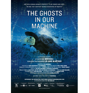Affiche de The Ghosts in our machine