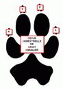 Image Revue Semestrielle de Droit Animalier
