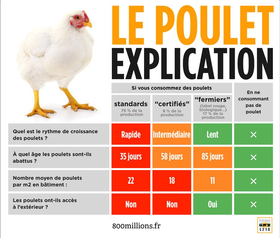 Tableau comparatif des différents modes d'élevages de poulets