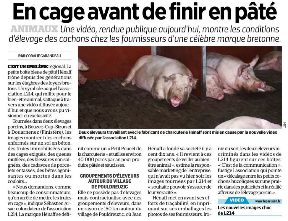 Article du Parisien : En cage avant de finir en pâté