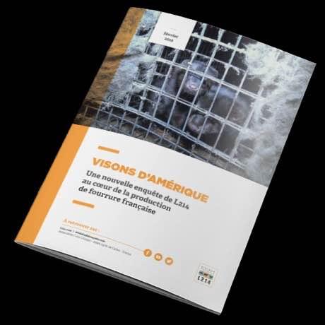 Rapport d'enquête – Élevages de visons pour la fourrure en France – L214
