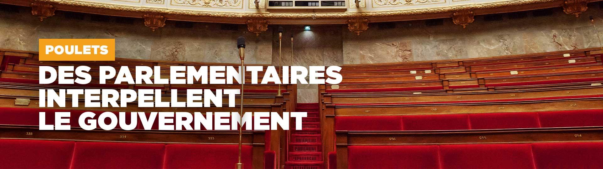 Questions parlementaires poulets