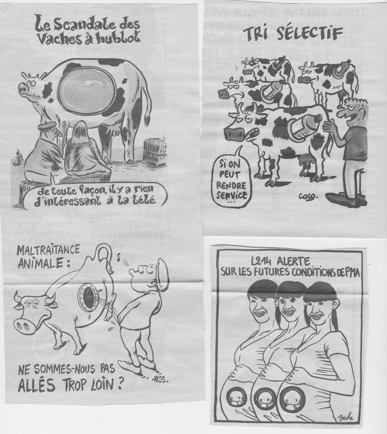 Coupure du Journal Charlie Hebdo sur les vaches à hublots