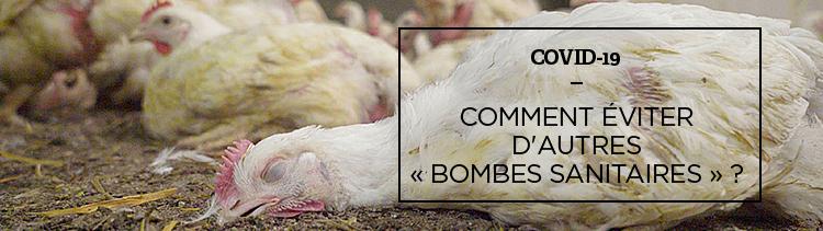Bannière Des zoonoses à l'antibiorésistance : bienvenue dans la fabrique des « bombes sanitaires »