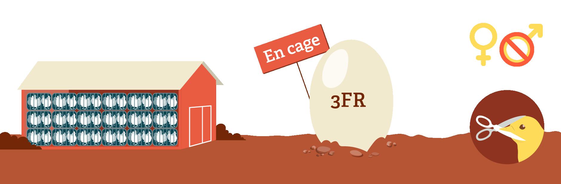 Code 3 : en cage