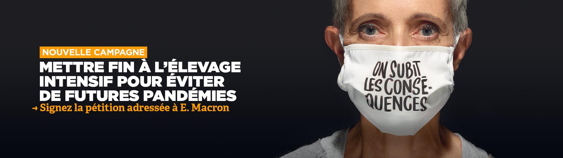 Agir sur les causes des pandémies en mettant fin à l'élevage intensif