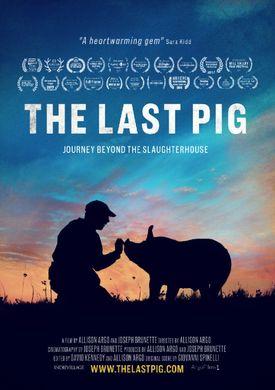 affiche de The Last Pig