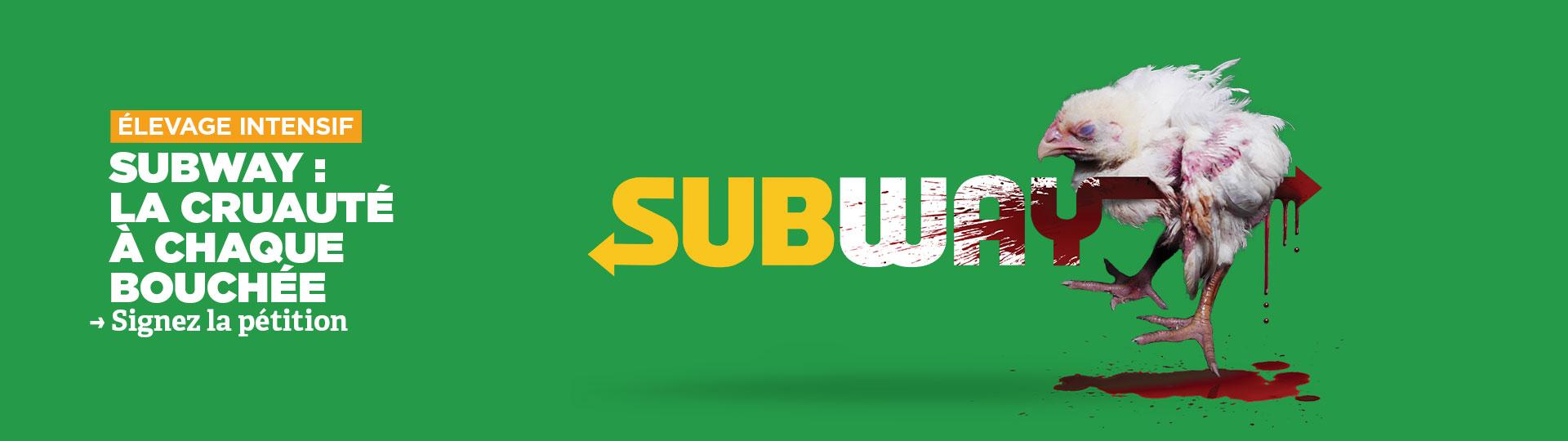 Lancement d'une campagne d'ampleur adressée à Subway