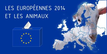 Bannière dossier Européennes 2014 et les animaux
