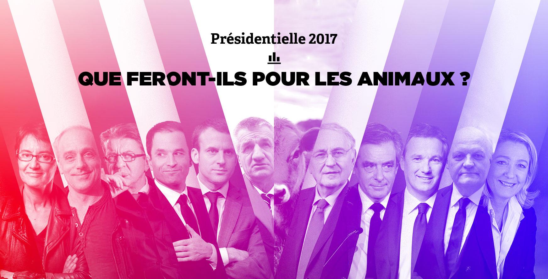 Présidentielle 2017: que feront-ils pour les animaux?