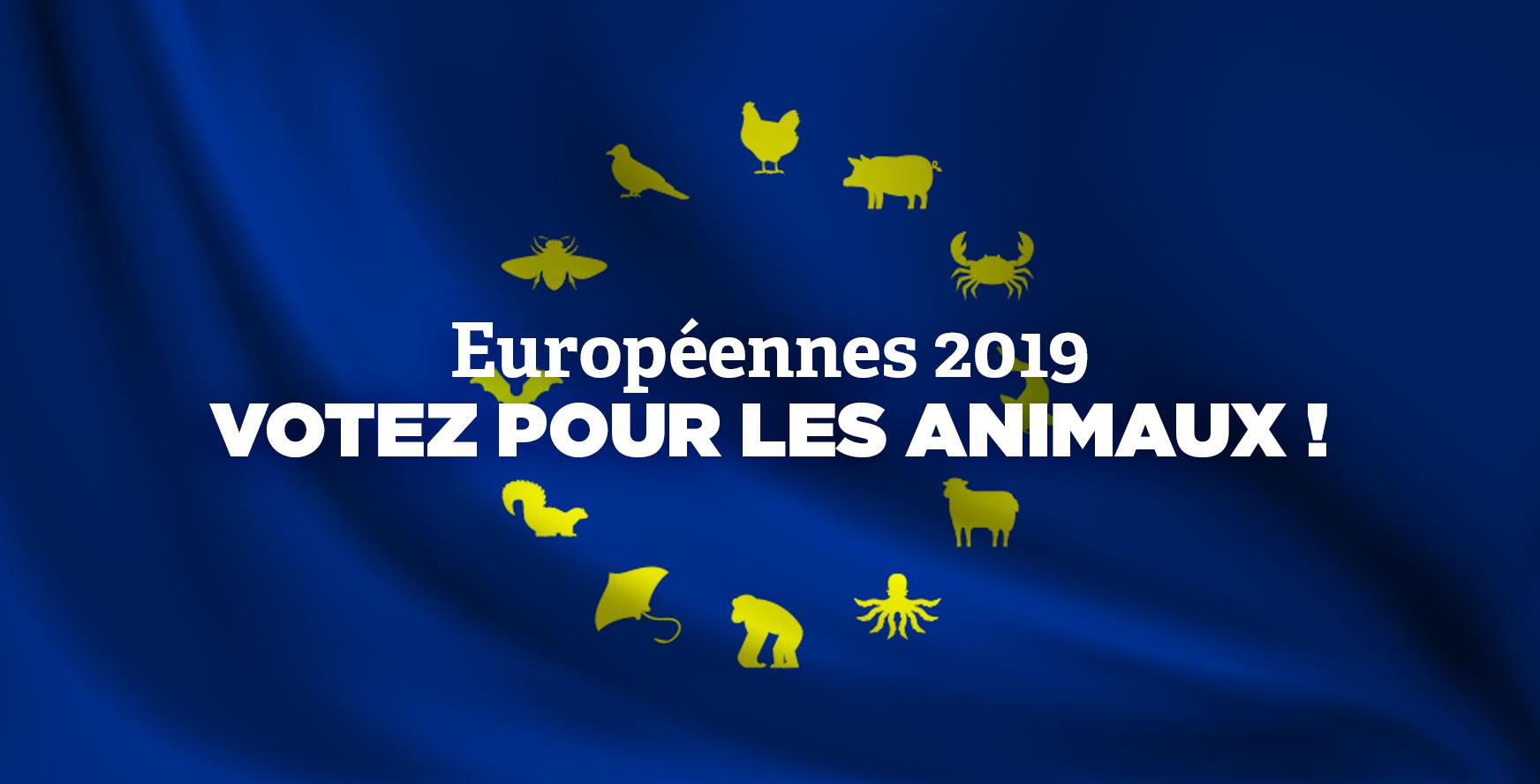 Dossier européennes 2019