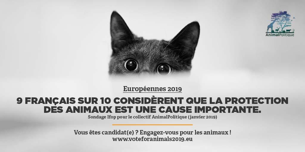 Voter pour les animaux - Européennes 2019