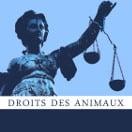 DDA, Droits des Animaux