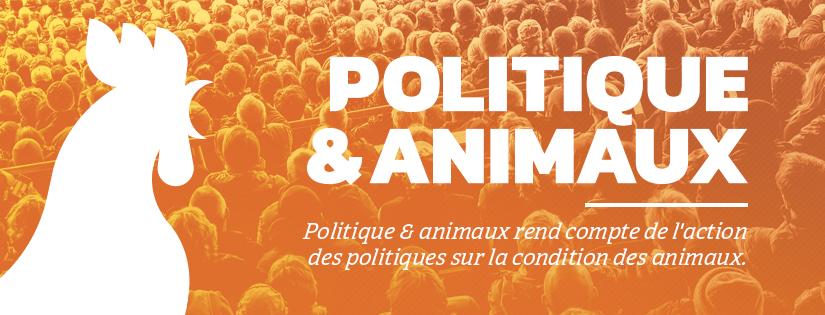 Suivre Politique & animaux