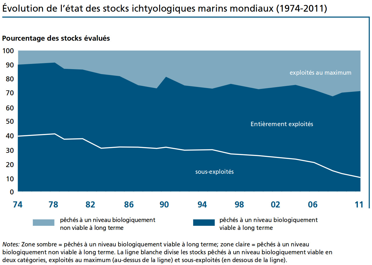 Stocks de poissons